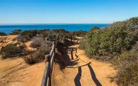 HIKING IN TORREY PINES